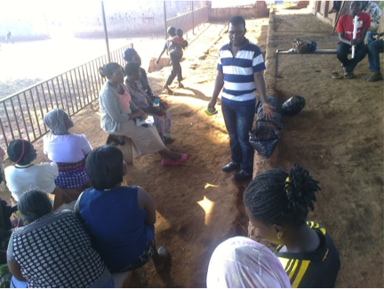 Pictures from our urban farming training session